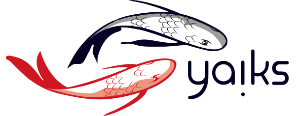 Yaiks ~ co-founds, invests and develops internet companies